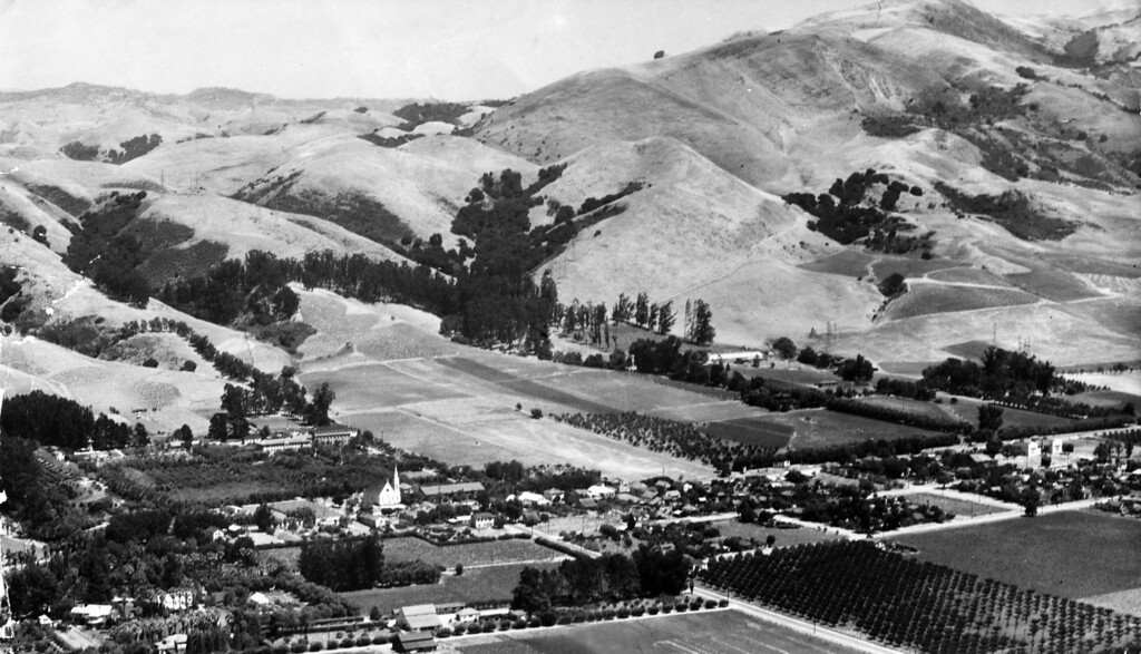 . Circa 1940 - Aerial view of the Mission, look for the church spire, surrounding orchards and town. The highest mountain to the right is Mission Peak. (Clyde Sunderland / File Photo)