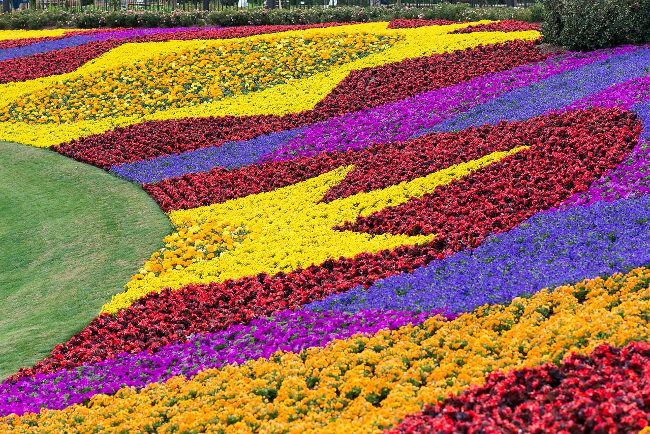 Flowers - Epcot Flower & Garden Festival 2016