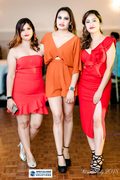 Specialised Solutions Xmas Party 2018 - Web (80 of 315)_final.jpg