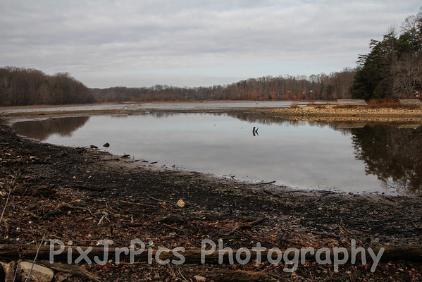 Lake Drained 11/28/12