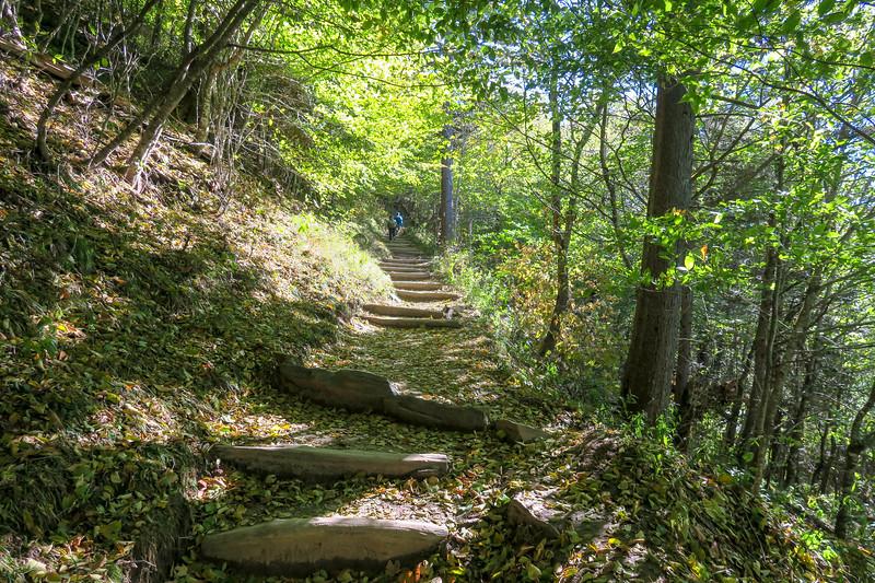 Appalachian Trail - 5,100'