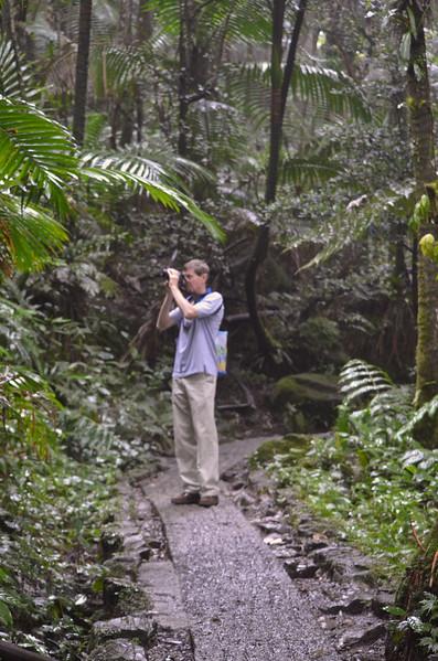 PR-El Yunque 2014-DSC_0216 (121 of 150)-003.jpg