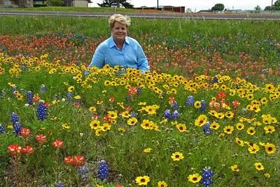 Texas Wildflowers - 2010