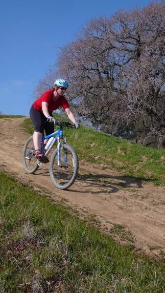 No, it isn't as steep as it looks, it's steeper.