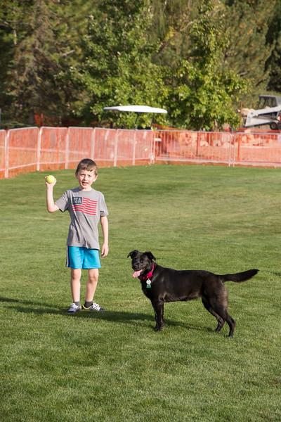 DogDays_Dogs_Gardens_2015_IMG_5421.jpg