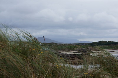 County Galway, Aug 2012