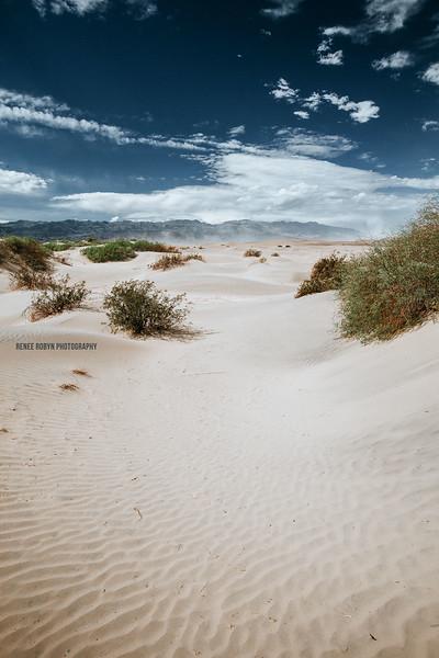 Death-Valley_4351WEB.jpg