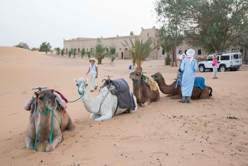 160924-125837-Morocco-0126.jpg