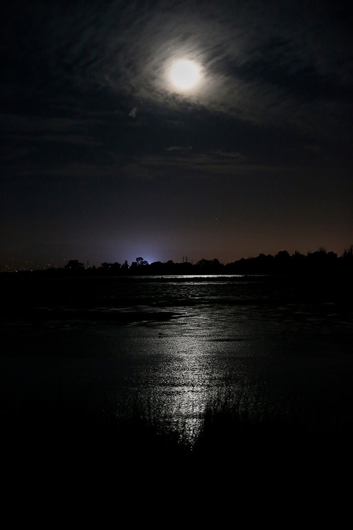 """. Palo Alto Baylands is  illuminated by the super moo in Palo Alto, Calif., on Sunday, Aug. 10, 2014, The phenomenon, which scientists call a \""""perigee moon,\"""" occurs when the moon is near the horizon and appears larger and brighter than other full moons. (Josie Lepe/Bay Area News Group)"""
