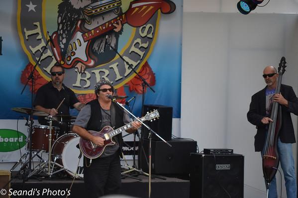 Blues at The Briars
