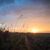 sundown on the plains