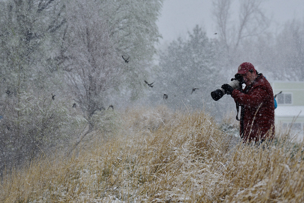 . A man photographs birds along the shore of Wonderland Lake in Wonderland Lake Park, in Boulder, Colorado, Saturday, April 16, 2016. Heavy wet snow is expected to continue falling through the end of the weekend in Denver and Boulder, according to the National Weather Service.  (Brenden Neville/Special to the Denver Post)