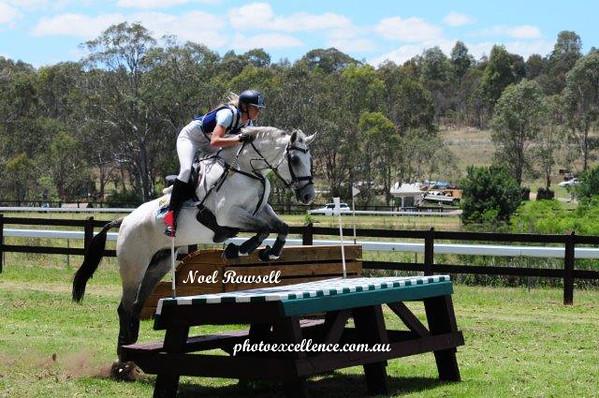 Eventing Clinic - Sydney Equestrian Centre