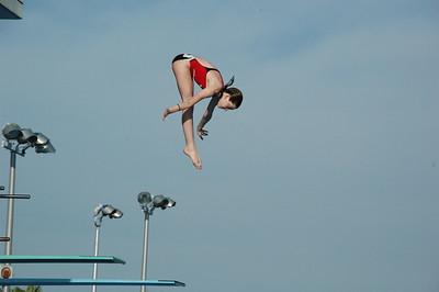 2007 High Dive Champions
