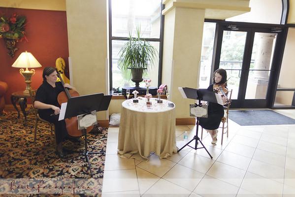 Southeast texas Wedding Preview 2011