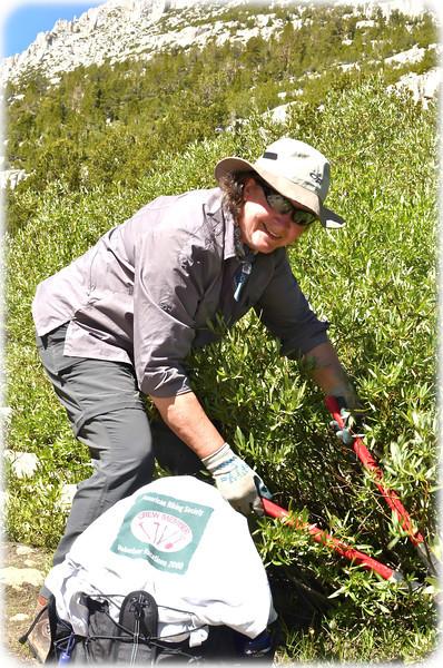 Sierra Trail Workers