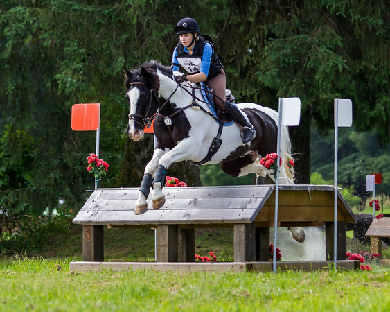 Equestrian - Spring Horse Trials - MREC, June 2019