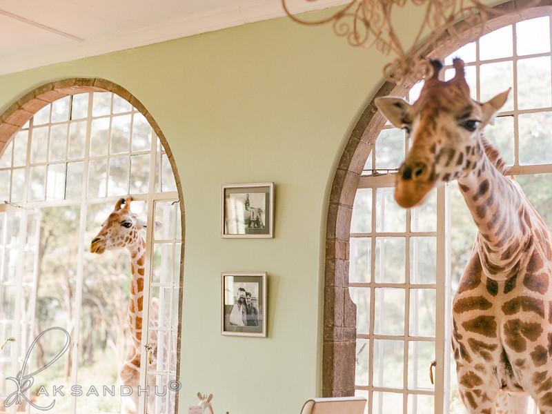 Safari-Africans-086.jpg
