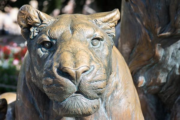 San Antonio Zoo 2015