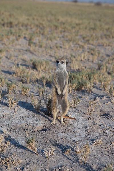 2019 sept 14 Botswana