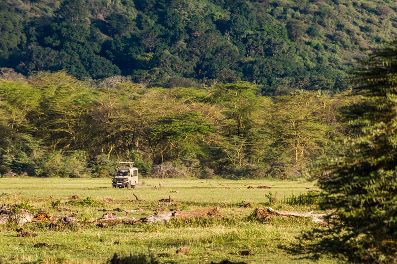 Off road vehicle in forest - East Africa - Tanzania