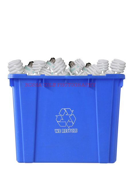 Recycle Bulbs 2.jpg