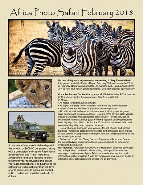 Africa Flyer.jpg