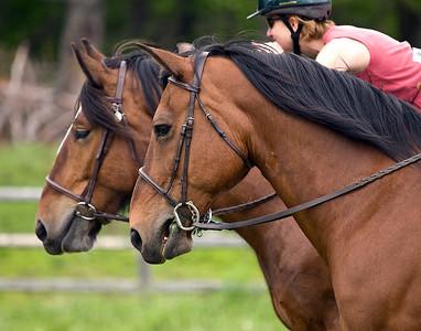 Ladies Horse Event at Andorra Forest Horse Farm 5/31/2009