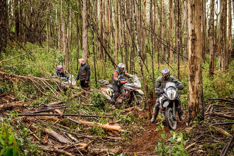 2019 KTM Australia Adventure Rallye (274).jpg