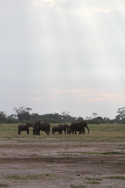 Kenya 2019 #2 282.JPG