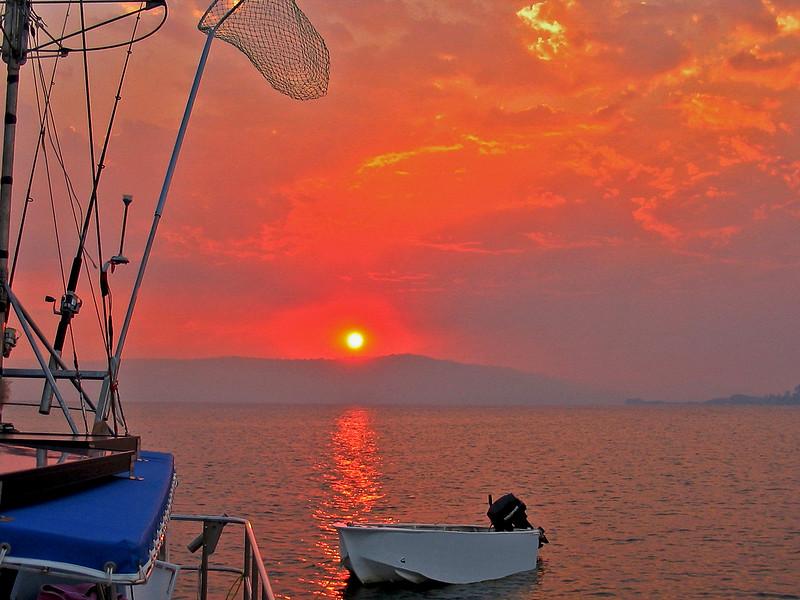 Salmon Sunset Seascape.