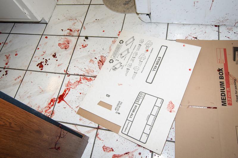 Subirats Home Deer damage-3991.jpg
