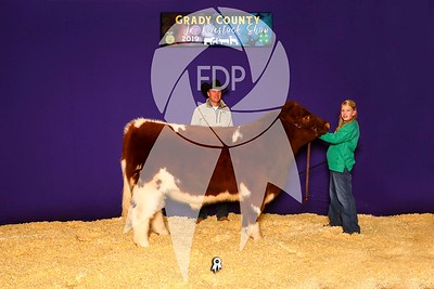 Grady County Livestock Show
