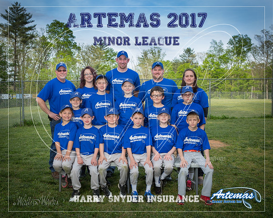 Artemas 2017 Minor Blue
