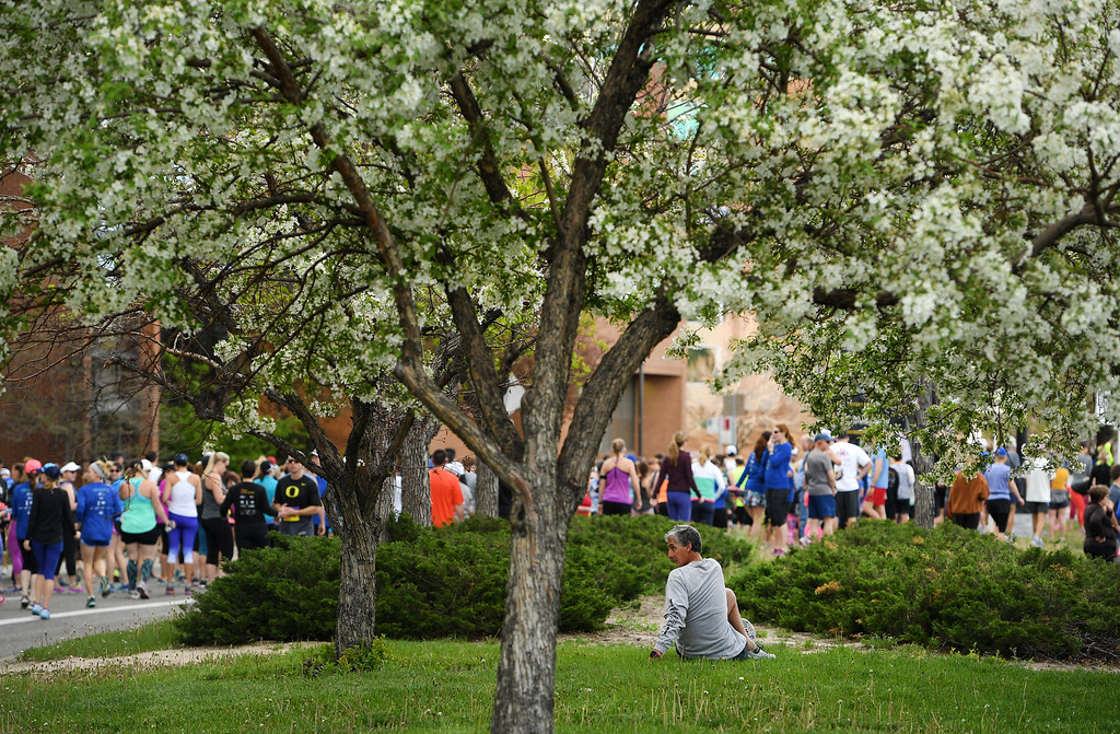 . DENVER, CO - APRIL 24:  A runner stretches beneath a blossoming tree along Steele Street before the start of the5 mile race of the 34th annual Cherry Creek Sneak road races on April 24, 2016 in Denver, Colorado. The day\'s races included a 10 miler, a 1.5 mile Sneak Sprint, a 5K and a 5 mile run and walk.   (Photo by Helen H. Richardson/The Denver Post)