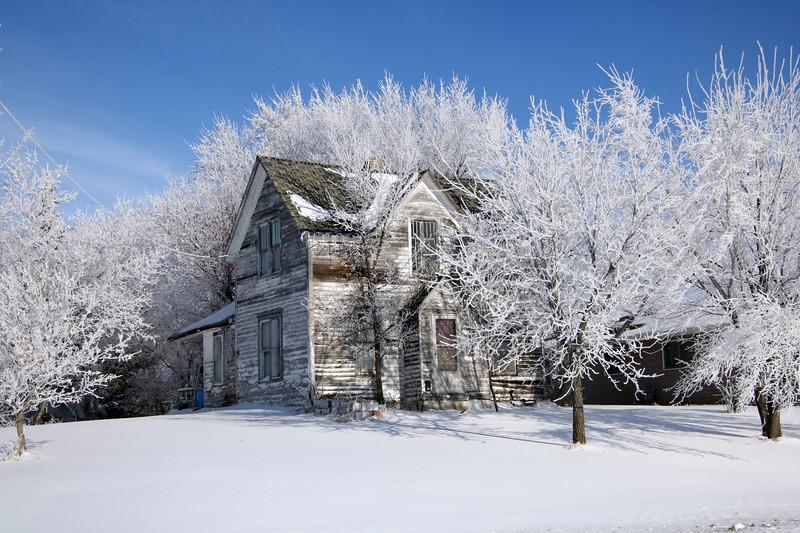 Winter Wonders 10.jpg