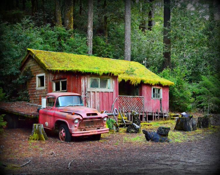 old trucks in CA.jpg