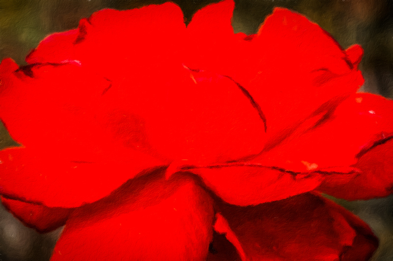 September 8 - Red.jpg