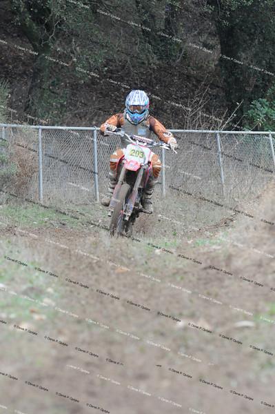 Race #'s 201 - 250