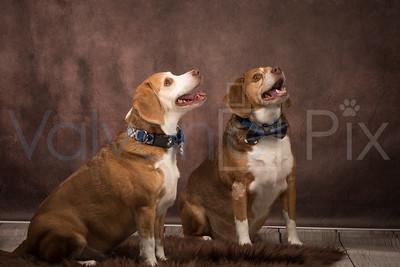 Copper & Oliver