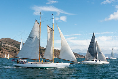 October 18 - Leukemia Cup Race
