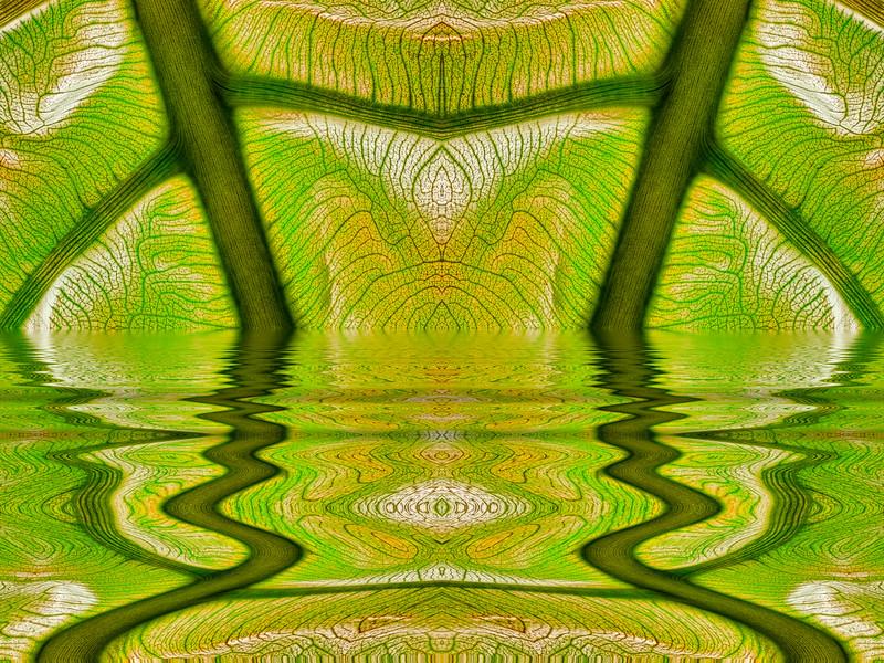 061-Leaf Web Flood x2.JPG