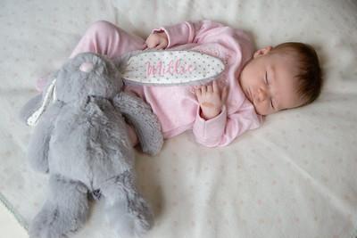 Millie - Newborn