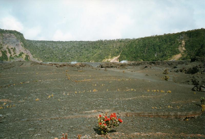 199805-hawaii-06120.jpg