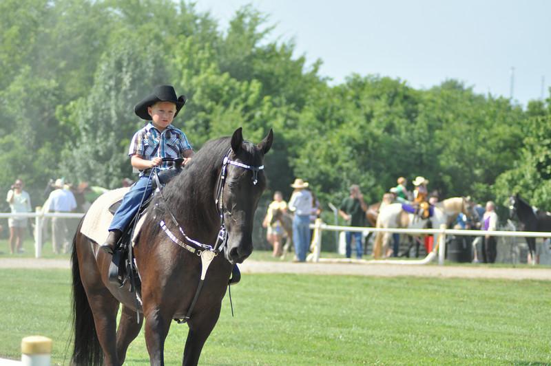 horseshow-sweetwater-0019.jpg