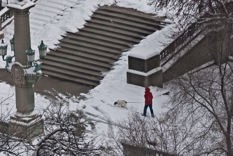 The dog walker in red jacket and hood
