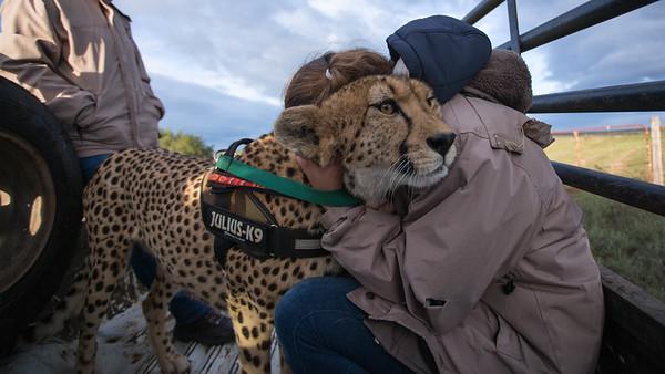 Daniell Cheetah Project Staff