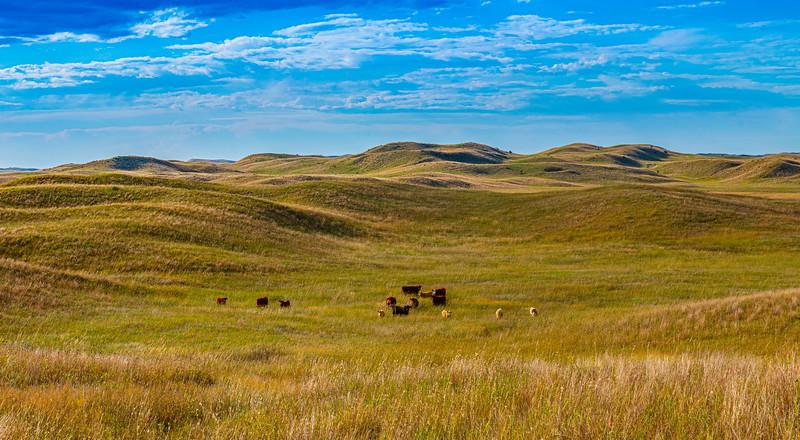 Horn Ranch-1299.jpg