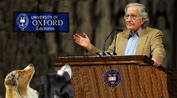 Chomsky3.GaWy_650x360.jpg