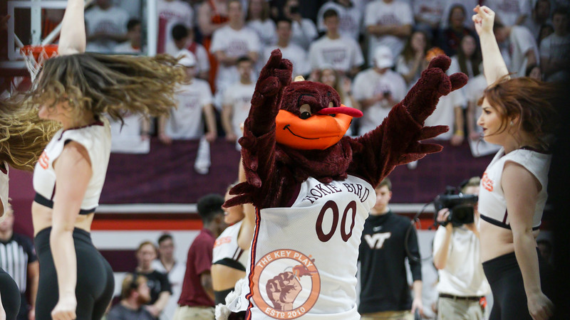The Hokiebird performs with the Virginia Tech High Techs during a timeout. (Mark Umansky/TheKeyPlay.com)